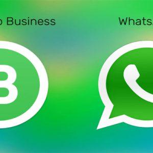 واتساپ بیزنس چیست و چه تفاوتی با واتساپ عادی دارد؟