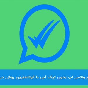 خواندن پیام واتساپ بدون تیک آبی ممکن است؟